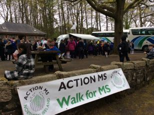 Action MS Walk
